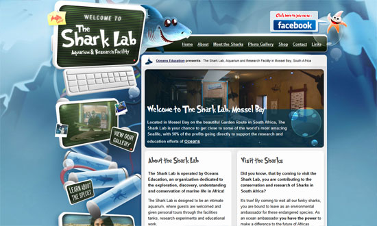 The Shark Lab Aquarium and Research Facility, Mossel Bay