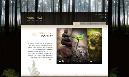 Visualwild.com :: Portfolio for James Ricks