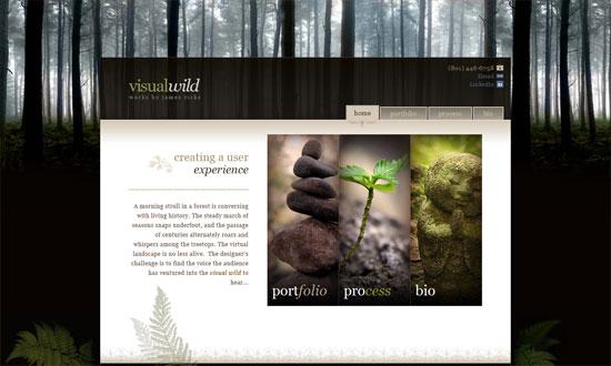 Visualwild.com :: Portfolio for James Ricks