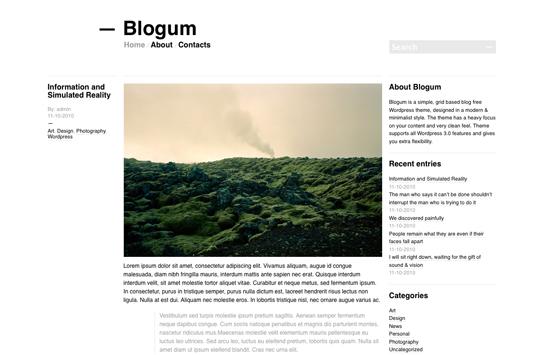 WordPress Theme White