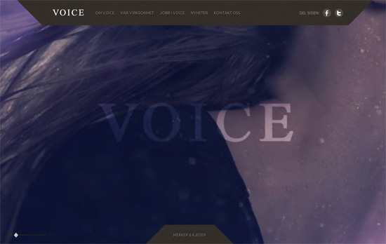 Voice website