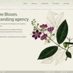 Bloom website